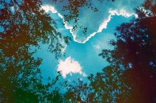 A photoshopped image of the sky with surrounding trees in the shot.