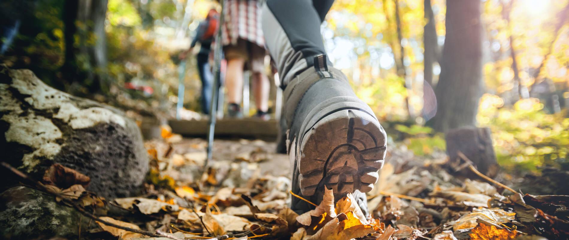 Hiker woman with trekking sticks climbs steep on mountain trail, focus on boot.